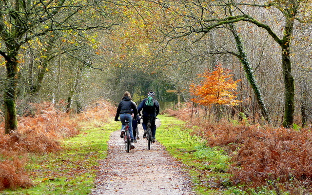 Forest of Dean Cycle SOS routes