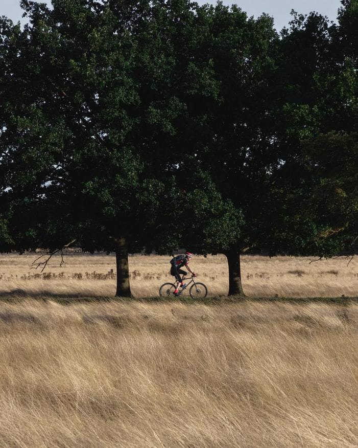 Richmond Park Cycle SOS